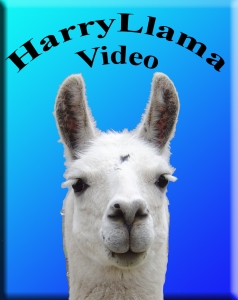 HarryLlama Video logo